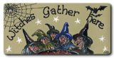 Witches gather here - spider cobweb and witches fridge magnet